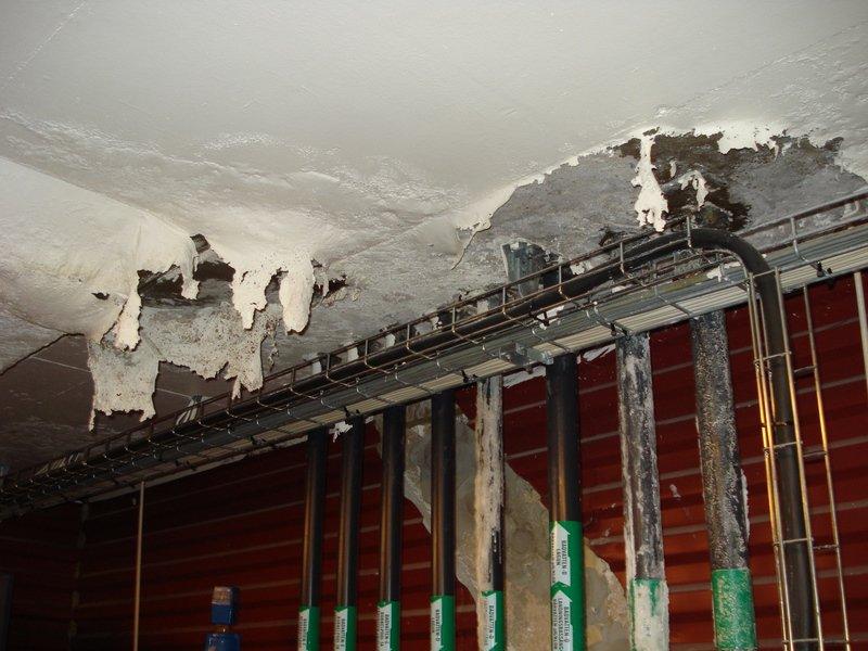 Utbedring av malingsavskalling og fukt i betong