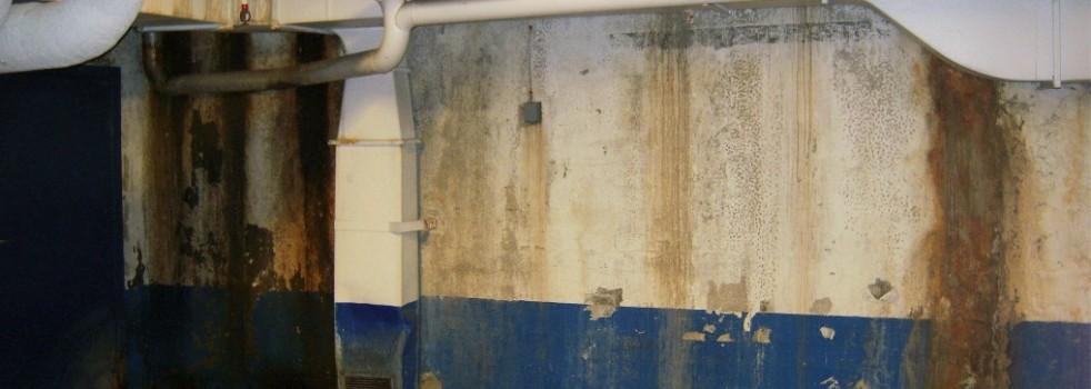 Fukt og muggsopp skader etter vannlekkasje